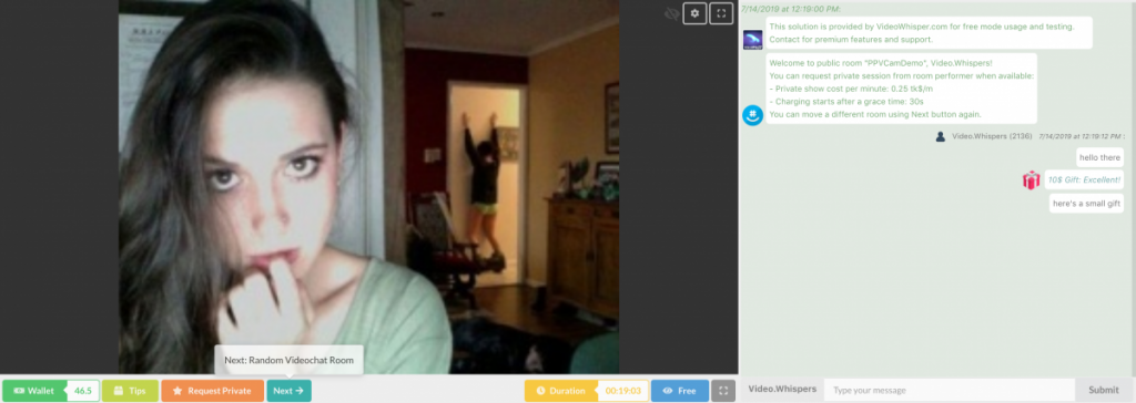 Client view in videochat room lobby: Clients can use random videochat feature to quickly move to a different performer room, with the Next button.